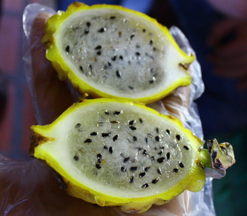 Exotic Fruit Tour, Medellin, Colombia