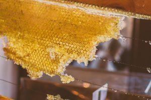 is honey vegan - honeycomb