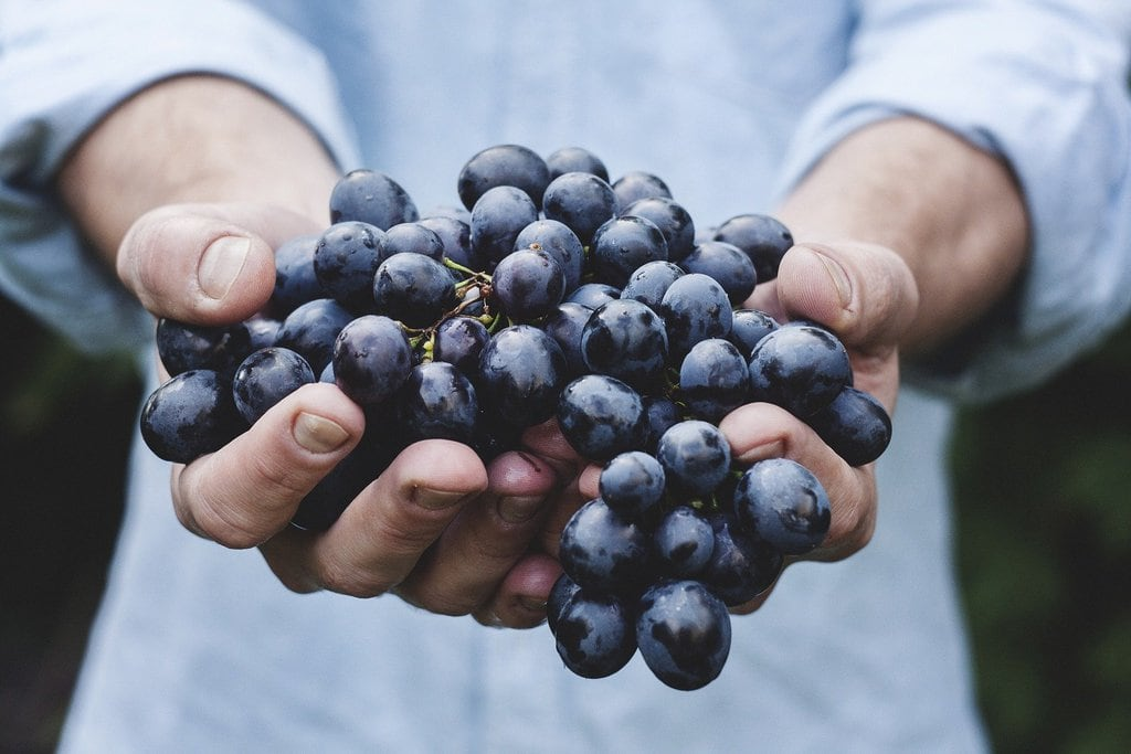 Frutarian Holding Grapes