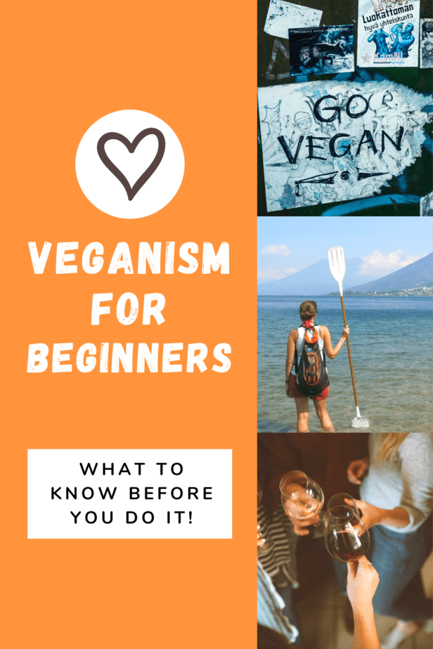 Decided to go vegan? Awesome! This Veganism for Beginners Guide has everything you need to know before you go vegan. Including, what veganism actually is, some pitfalls to avoid, and plenty of good info to help you along the way!