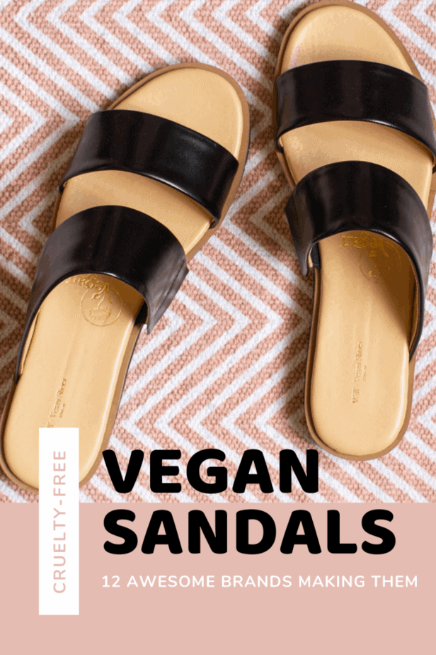 Looking for a new pair of vegan sandals in 2020? Then this guide is for you! Here are 12 awesome brands making stunning vegan sandals for women, men, and kids. Personal reviews, the top vegan brands, and large brands with vegan lines. There's something for everyone here.
