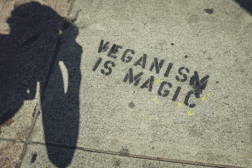 """quotes on veganism - """"vegan is magic"""""""