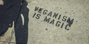 103 Quotes on Veganism from Philosophers, Actors, Comedians, & More!